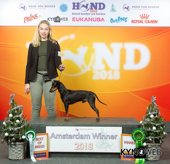 + Winner 2018