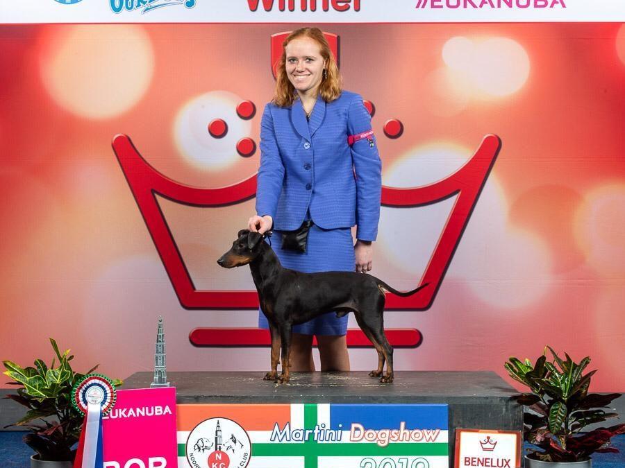 + Benelux Winner Groningen