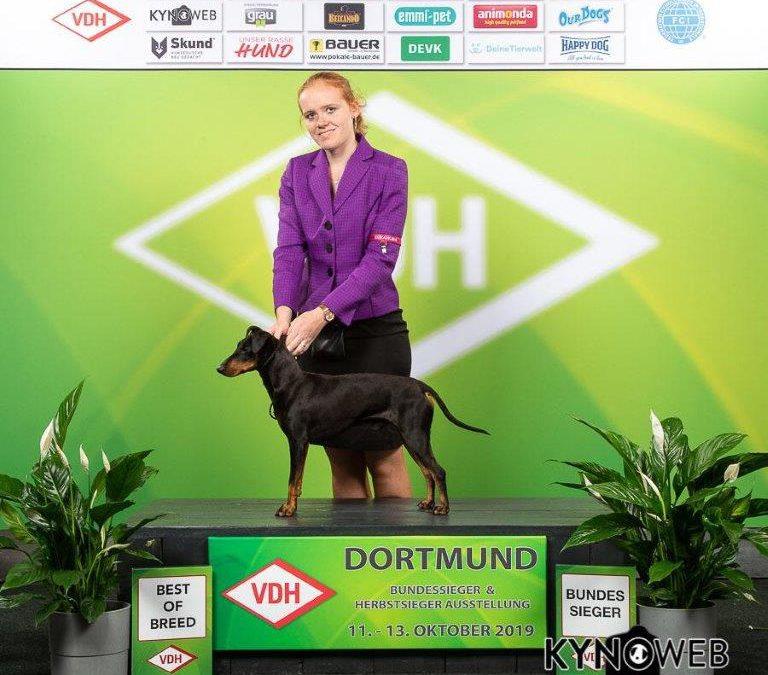 + Bundessieger 2019