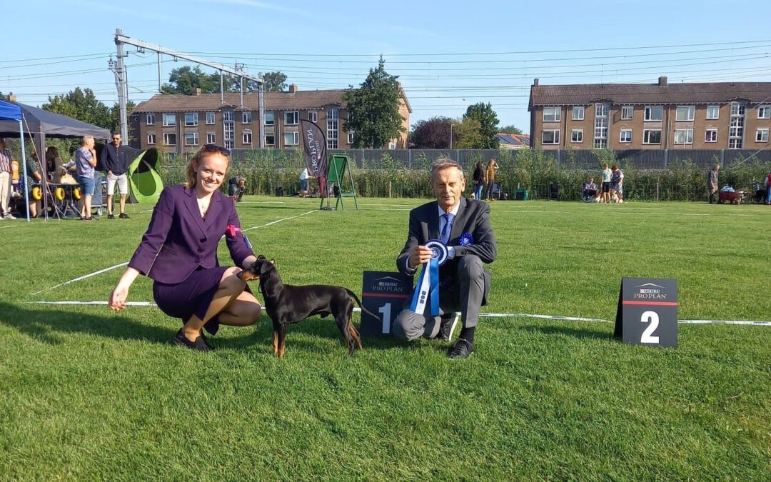+ Outdoor Dogshow Zwolle '21